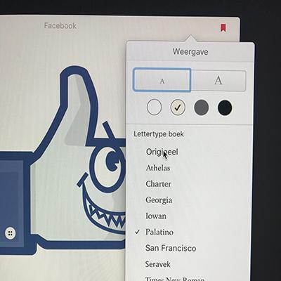 ePub als ebook formaat?